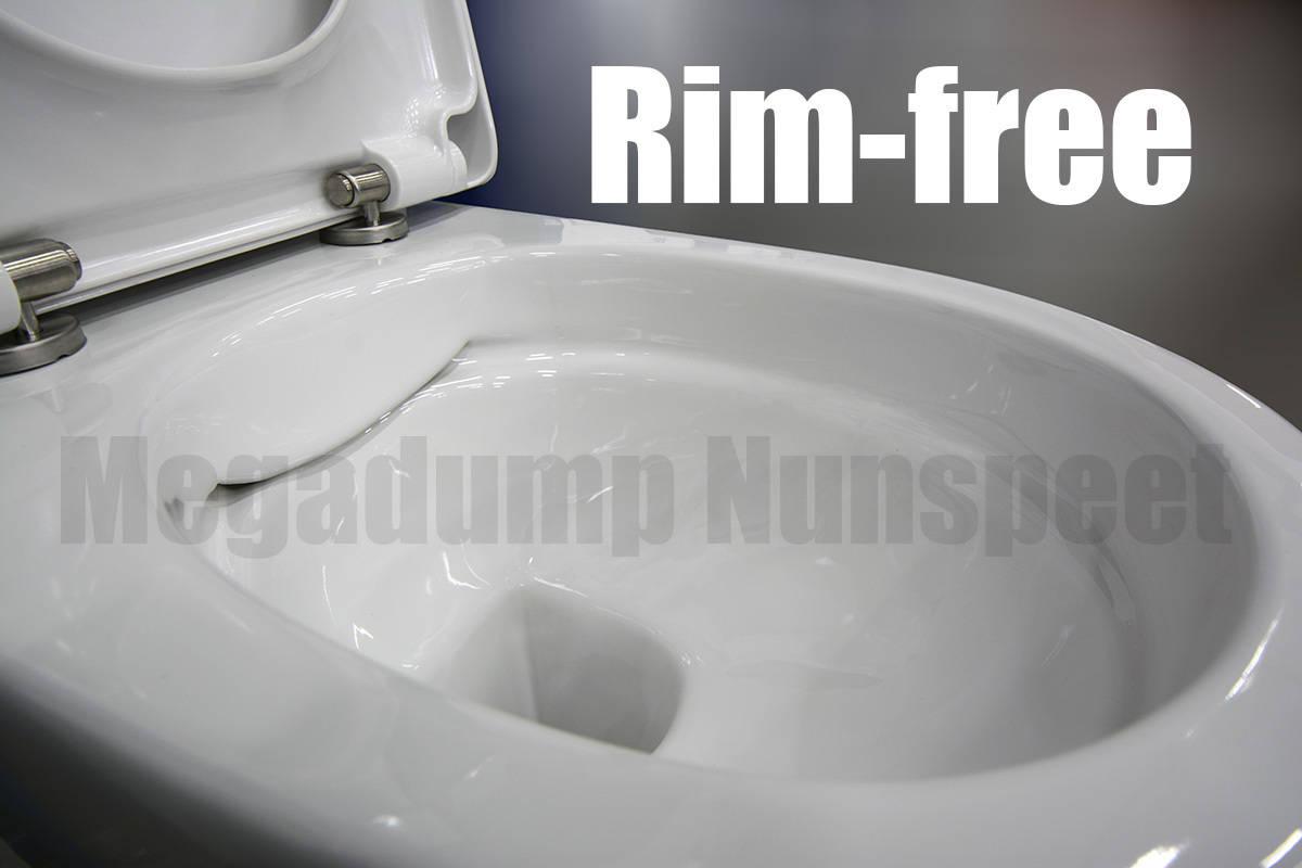 Geberit Compleet Toilet Met Rim Free Wandcloset Zonder